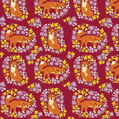 flowery foxes