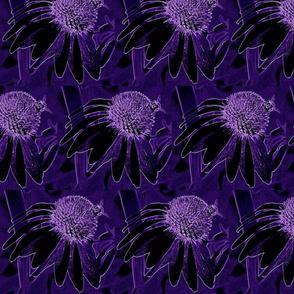 A very purple cornflower