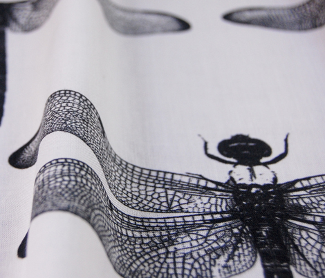 Dragonflies - 6 inch Wingspan