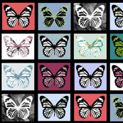 "Butterfly Collection (4.5"")"