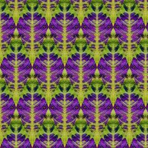 Leaf Diamond purple