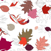 Autumn Leaves in Rose Hues