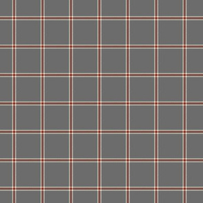 John's plaid blanket - small