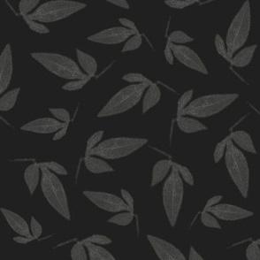 Gray Leaves on Dark Grey