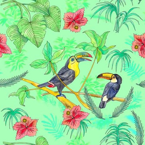 Watercolour Toucans