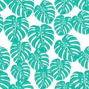 monstera // tropical palm print tree summer cheese plant houseplant trend