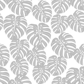 monstera // grey and white kids tropical palm palms palm print trend
