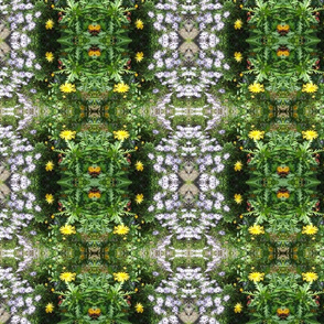 Wild Daisy Garden - Large Scale (Ref. 4784b)