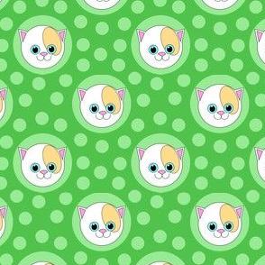 Extra Dotty Pussycat Polka Dots