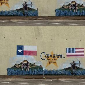 Cameron, Texas