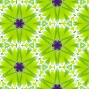 flowers in Lime Green and Purple