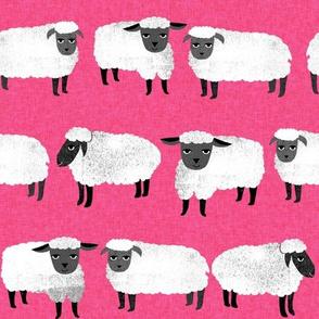 sheep // farm animals hot pink nursery