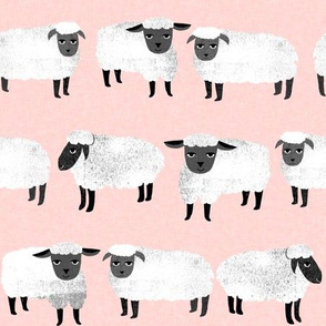 sheep // pastel pink sheep wool knitting farm animal