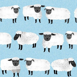 sheep // farm animal pastel blue kids knitting
