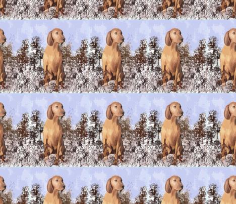 Redbone Coonhound in the weeds