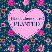 Gardeners  Quote