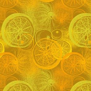 Hand drawn citrus orange fruit
