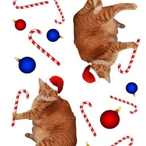 Scoopy the cat Christmas