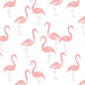 flamingo pastel pink sweet soft girly illustration watercolor spring summer tropical