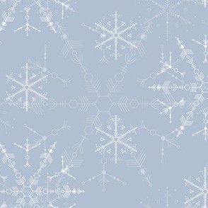 Space Snowflakes on silver