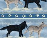 Gray_wolves_in_snow_stripe_rev_thumb