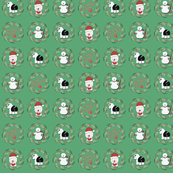 Shaggy Christmas to You