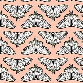 luna moth // blush pink moth kids girls spring sweet butterfly butterflies girls