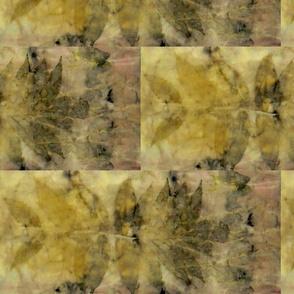Sumac Madder Botanical Print 2