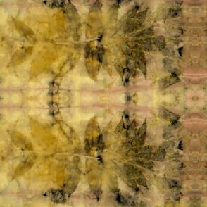Sumac Madder Botanical Print 3