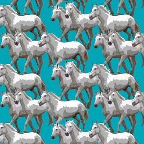 horses_color_00A5B5