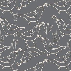 Gambel's quail grey