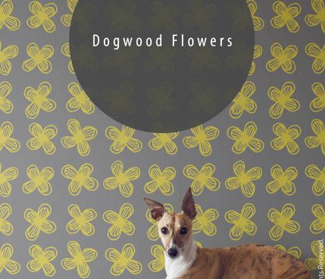 Dogwood Flowers by Friztin