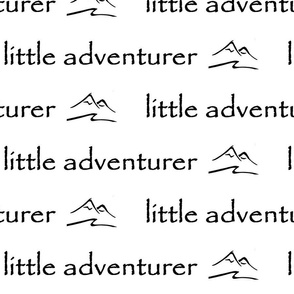little adventurer nursery // black & white