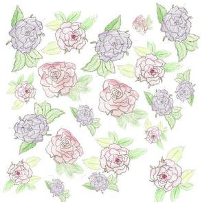 Rose-Sketch-Practice
