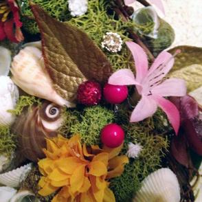 Seashels-and-Flowers