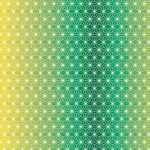 Asanoha shaded-green short