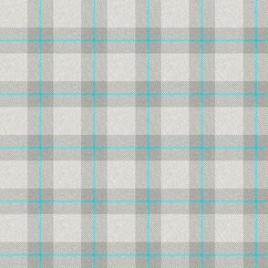 Grey/Blue Plaid