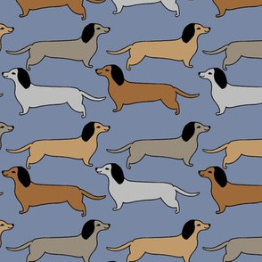 dachshund // doxie sausage dog blue cute dogs design