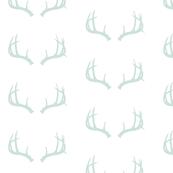 Deer Antlers in Mint