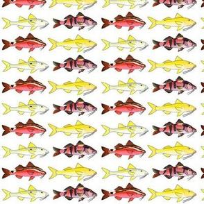 4 Goatfish