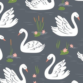 Swans on Dark Grey