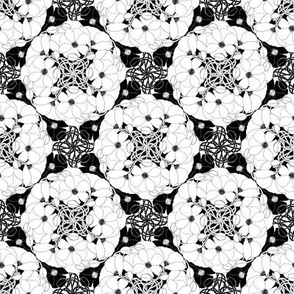 POPPY_mandala_black_and_white