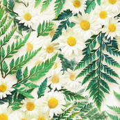 Textured Vintage Daisies and Ferns - large