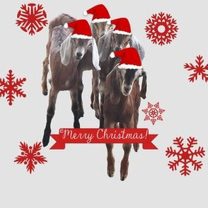 Goat Merry Christmas