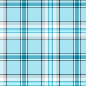 Winter Wonderland Plaid