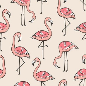 Flamingos in Peach