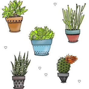 Succulents with Hearts