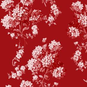 Edwina in cranberry