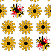 * black eyed susans *