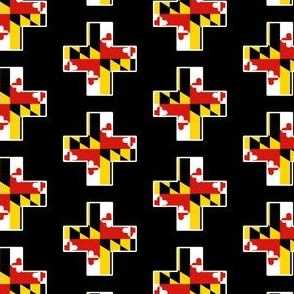 +positive about maryland+